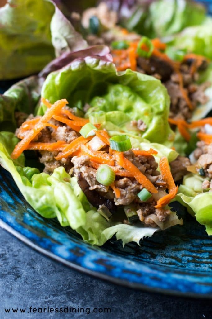 Paleo Asian Lettuce Wraps found at http://www.fearlessdining.com