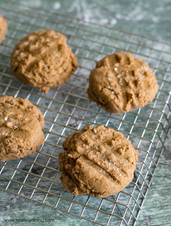 gluten free molasses cookies on a cooling rack.
